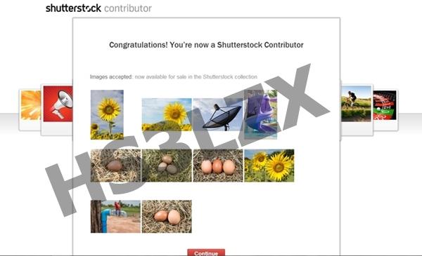 ก้าวแรกนักขายภาพออนไลน์กับ Shutterstock